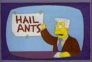 All Hail Facts About Ants
